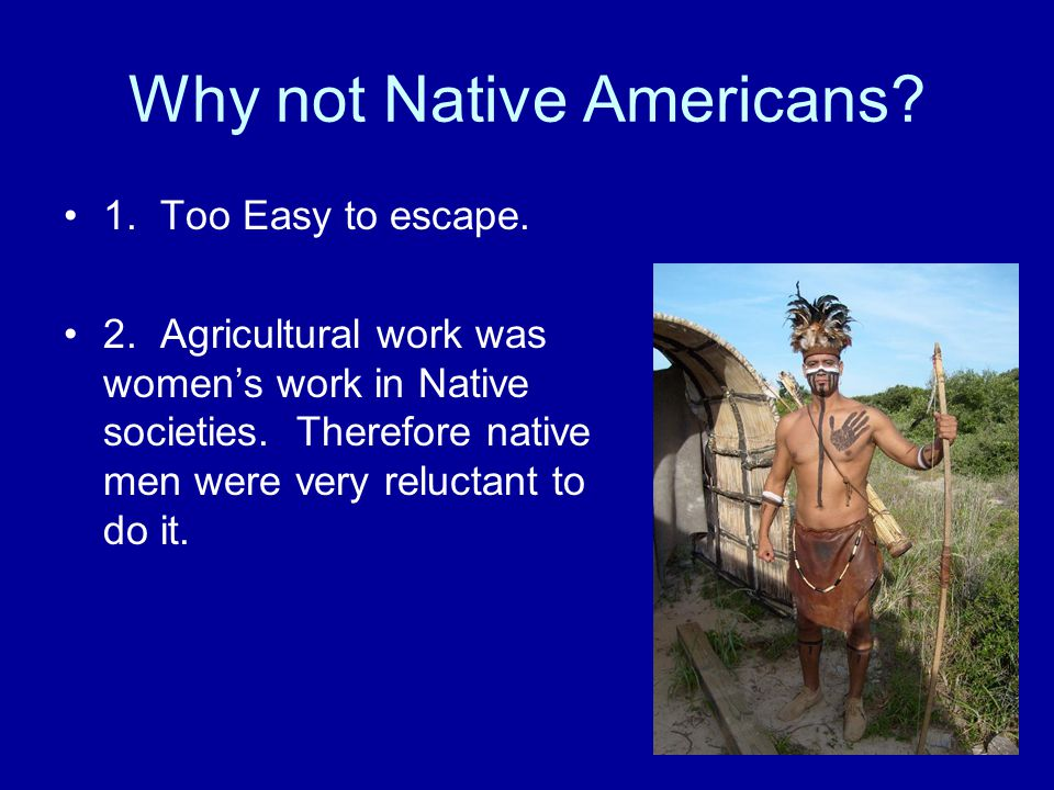 Why not Native Americans. 1. Too Easy to escape.