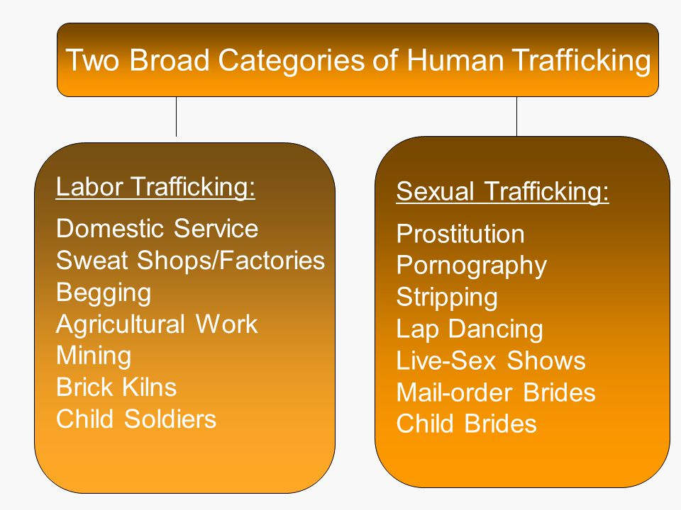 Two Broad Categories of Human Trafficking Labor Trafficking: Domestic Service Sweat Shops/Factories Begging Agricultural Work Mining Brick Kilns Child Soldiers Sexual Trafficking: Prostitution Pornography Stripping Lap Dancing Live-Sex Shows Mail-order Brides Child Brides