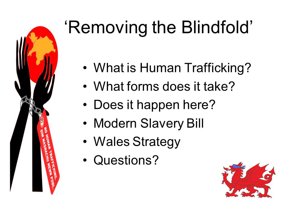Wales Strategy Awareness Raising: Embedded Training, Intel sharing & Recording of data Supporting Victims: Child & Adult Pathways Prevention - Risks Investigation – Modern Slavery Bill