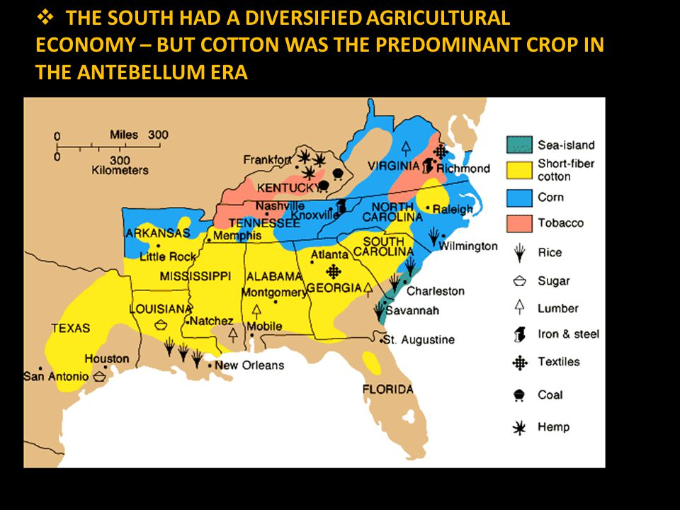  THE SOUTH HAD A DIVERSIFIED AGRICULTURAL ECONOMY – BUT COTTON WAS THE PREDOMINANT CROP IN THE ANTEBELLUM ERA