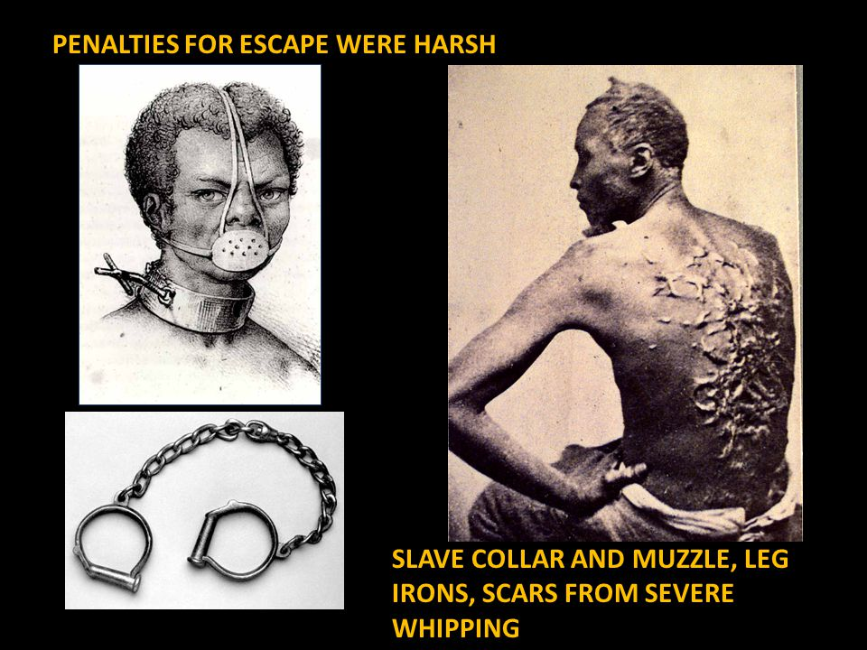 SLAVE COLLAR AND MUZZLE, LEG IRONS, SCARS FROM SEVERE WHIPPING PENALTIES FOR ESCAPE WERE HARSH