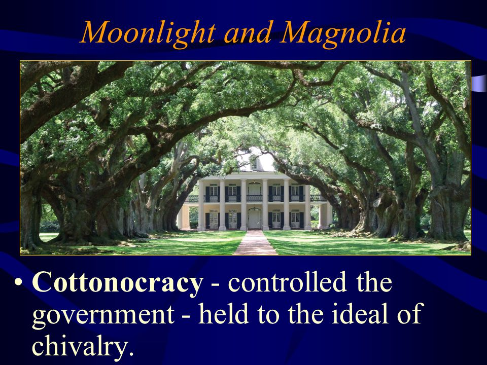 Moonlight and Magnolia Cottonocracy - controlled the government - held to the ideal of chivalry.
