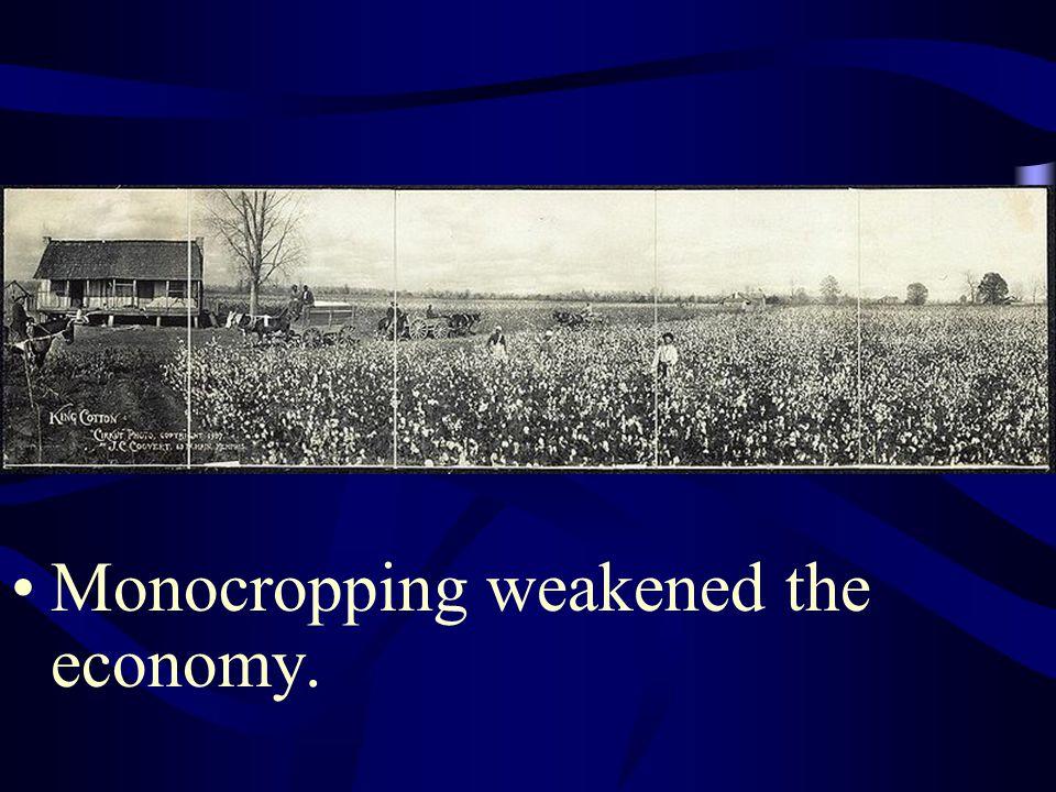 Monocropping weakened the economy.