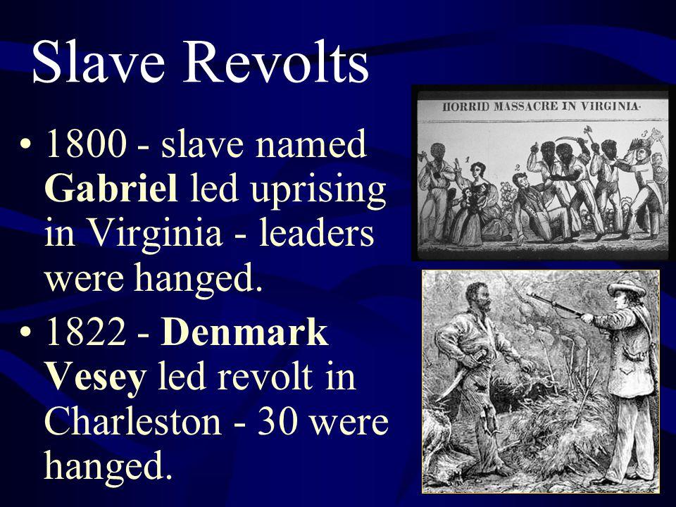 Slave Revolts 1800 - slave named Gabriel led uprising in Virginia - leaders were hanged. 1822 - Denmark Vesey led revolt in Charleston - 30 were hange