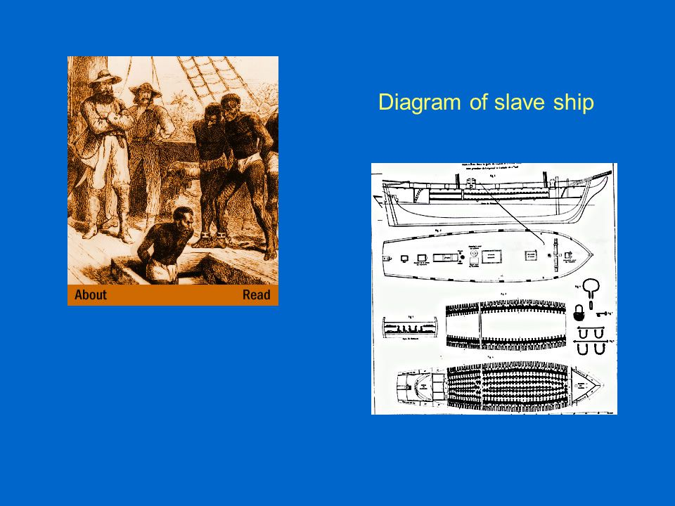 Diagram of slave ship
