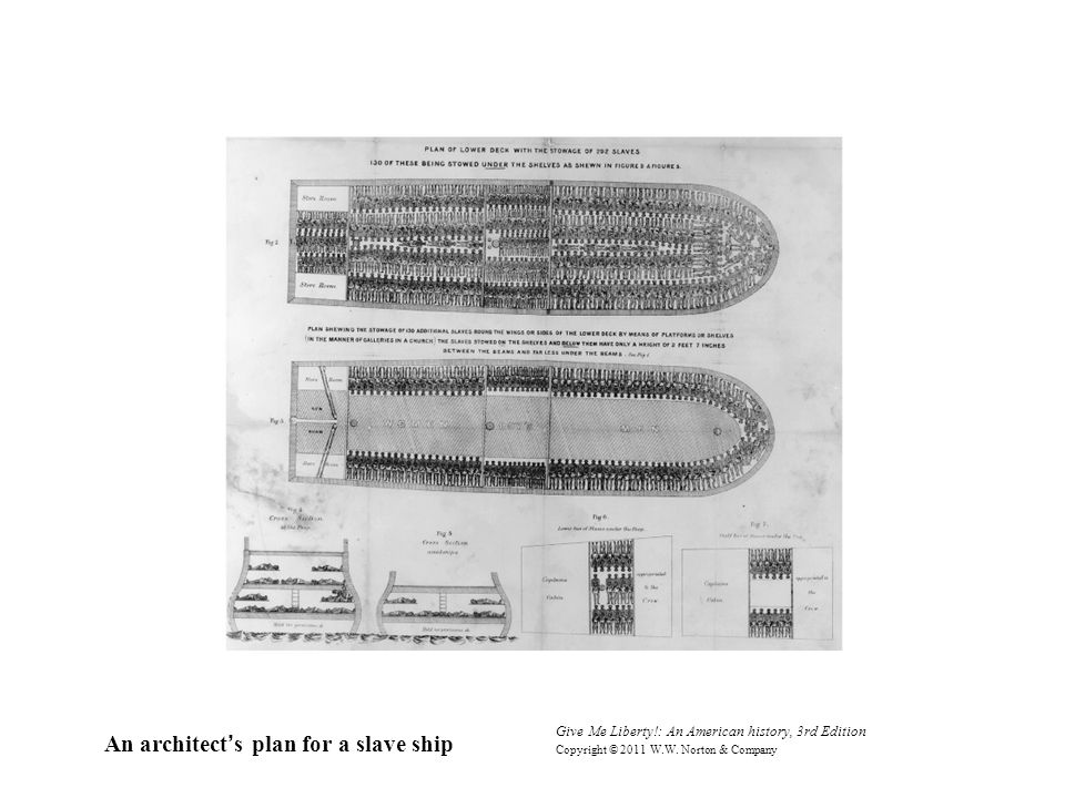 Give Me Liberty!: An American history, 3rd Edition Copyright © 2011 W.W. Norton & Company An architect's plan for a slave ship