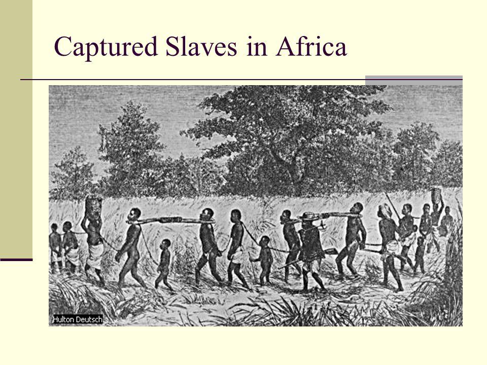 Captured Slaves in Africa