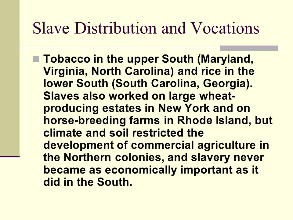 Slave Distribution and Vocations Tobacco in the upper South (Maryland, Virginia, North Carolina) and rice in the lower South (South Carolina, Georgia)