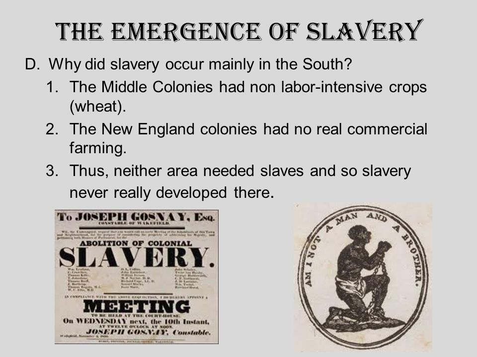 The Emergence of Slavery D.Why did slavery occur mainly in the South.