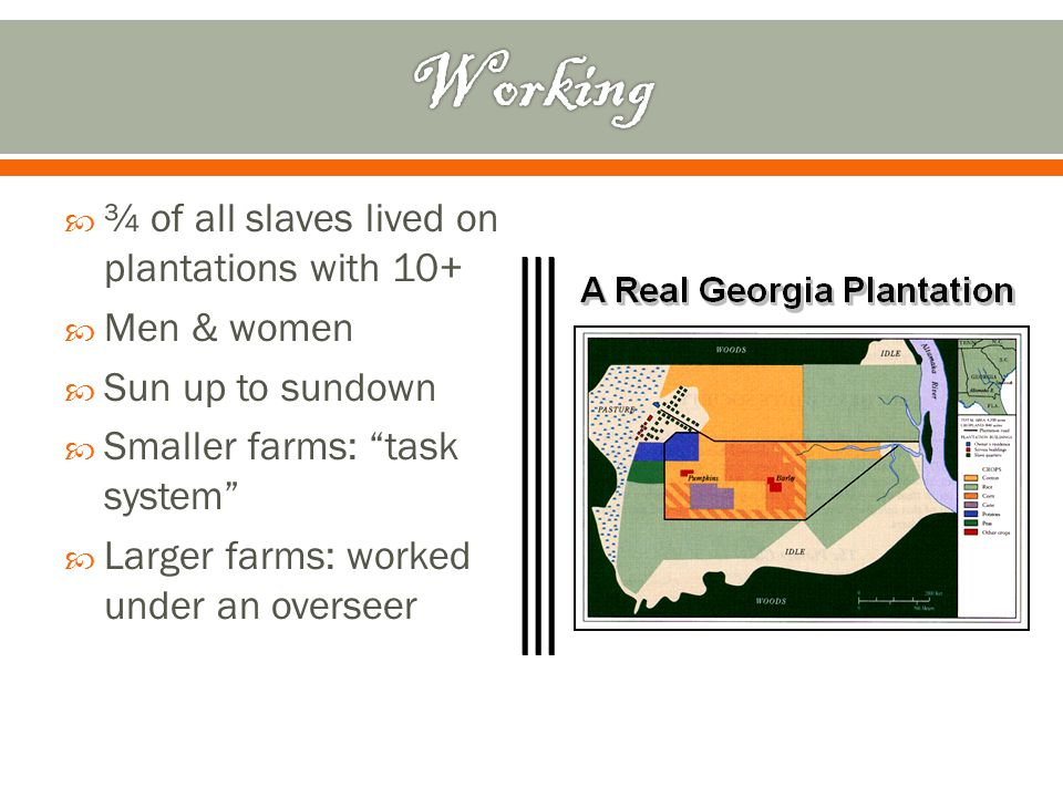 " ¾ of all slaves lived on plantations with 10+  Men & women  Sun up to sundown  Smaller farms: ""task system""  Larger farms: worked under an overs"