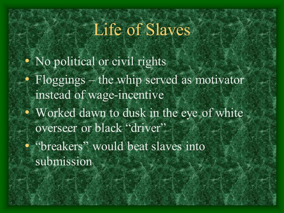 Life of Slaves No political or civil rights Floggings – the whip served as motivator instead of wage-incentive Worked dawn to dusk in the eye of white overseer or black driver breakers would beat slaves into submission