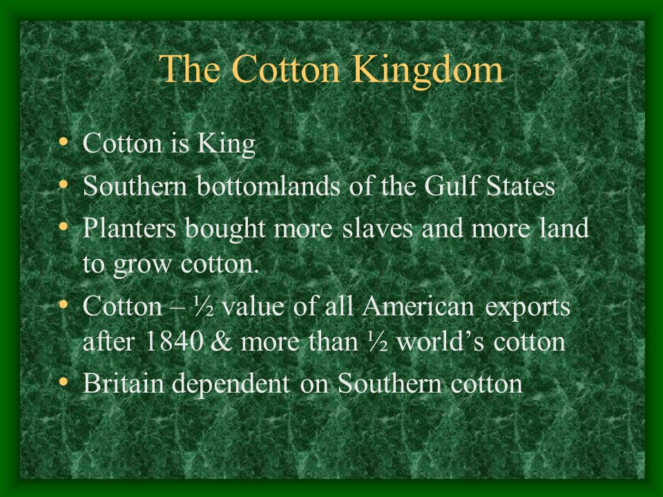 The Cotton Kingdom Cotton is King Southern bottomlands of the Gulf States Planters bought more slaves and more land to grow cotton.