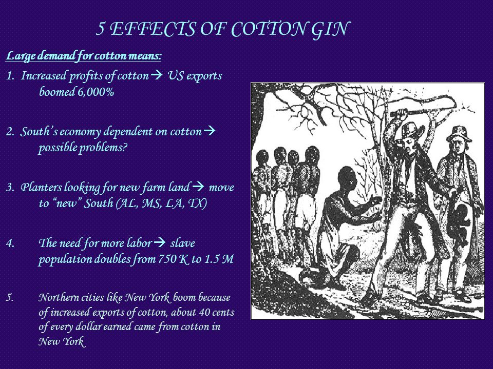5 EFFECTS OF COTTON GIN Large demand for cotton means: 1. Increased profits of cotton  US exports boomed 6,000% 2. South's economy dependent on cotto