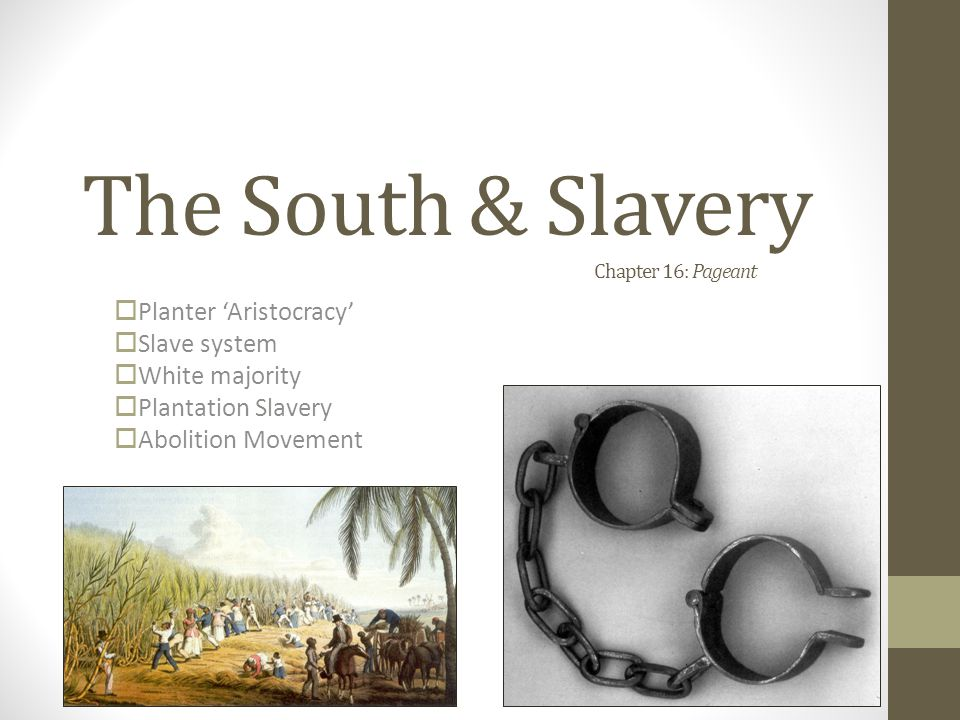 The South & Slavery Chapter 16: Pageant  Planter 'Aristocracy'  Slave system  White majority  Plantation Slavery  Abolition Movement