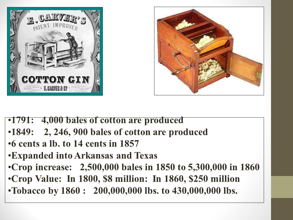 1791: 4,000 bales of cotton are produced 1849: 2, 246, 900 bales of cotton are produced 6 cents a lb.