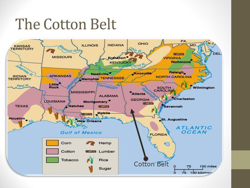 The Cotton Belt Cotton Belt