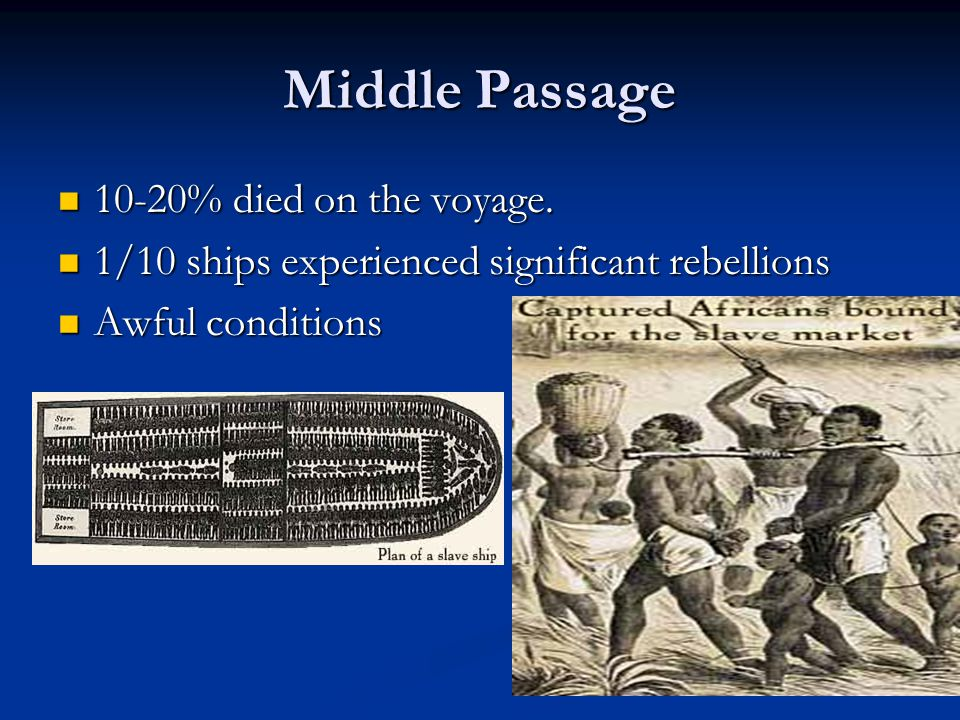 Middle Passage 10-20% died on the voyage. 10-20% died on the voyage.
