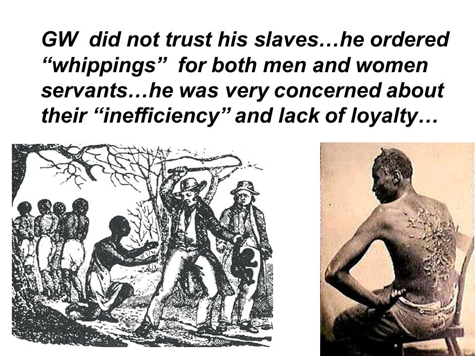 GW did not trust his slaves…he ordered whippings for both men and women servants…he was very concerned about their inefficiency and lack of loyalty…