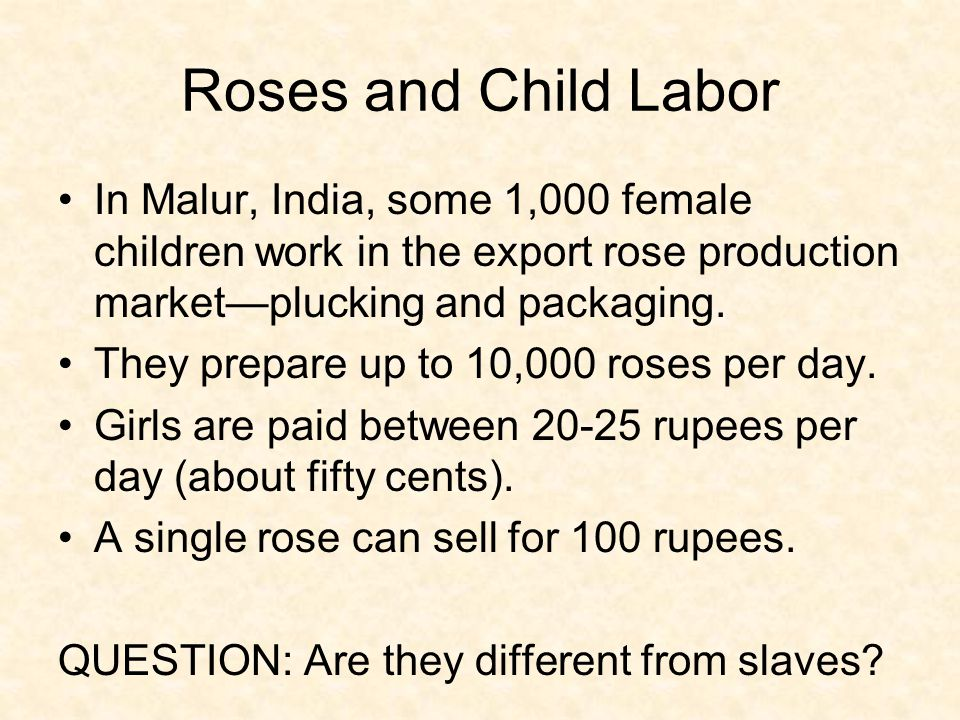 Roses and Child Labor In Malur, India, some 1,000 female children work in the export rose production market—plucking and packaging.