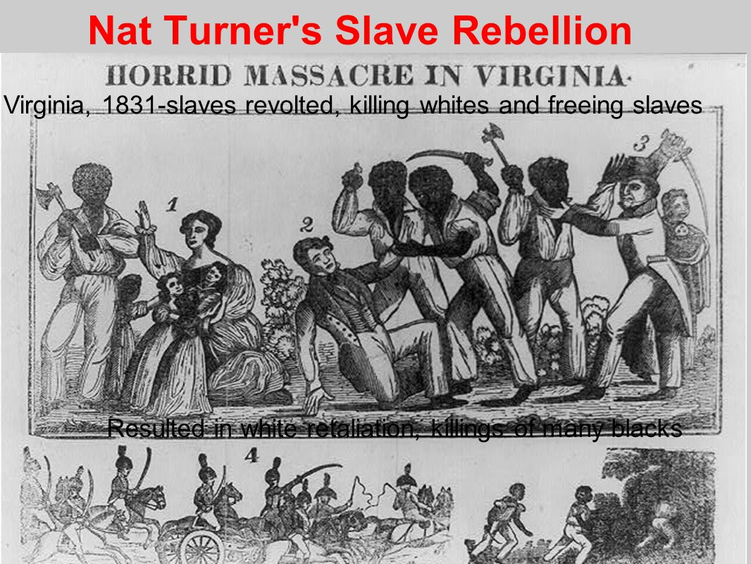 Nat Turner s Slave Rebellion Virginia, 1831-slaves revolted, killing whites and freeing slaves Resulted in white retaliation, killings of many blacks