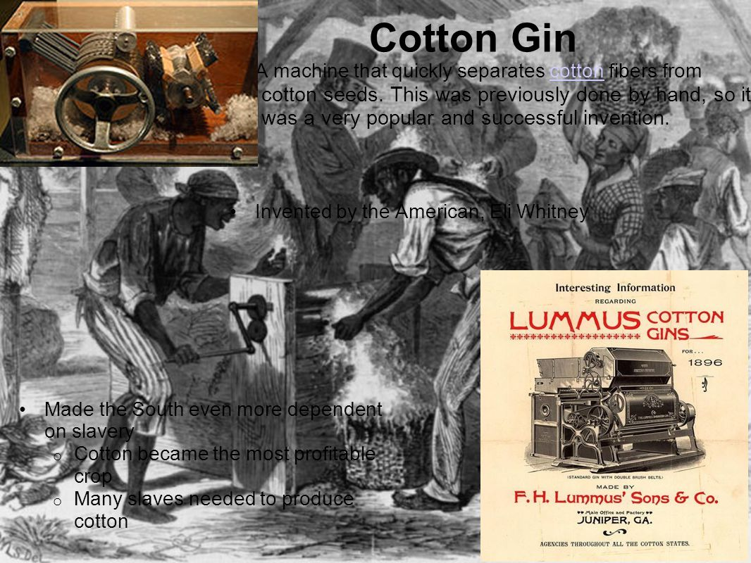 Cotton Gin A machine that quickly separates cotton fibers from cotton cotton seeds.
