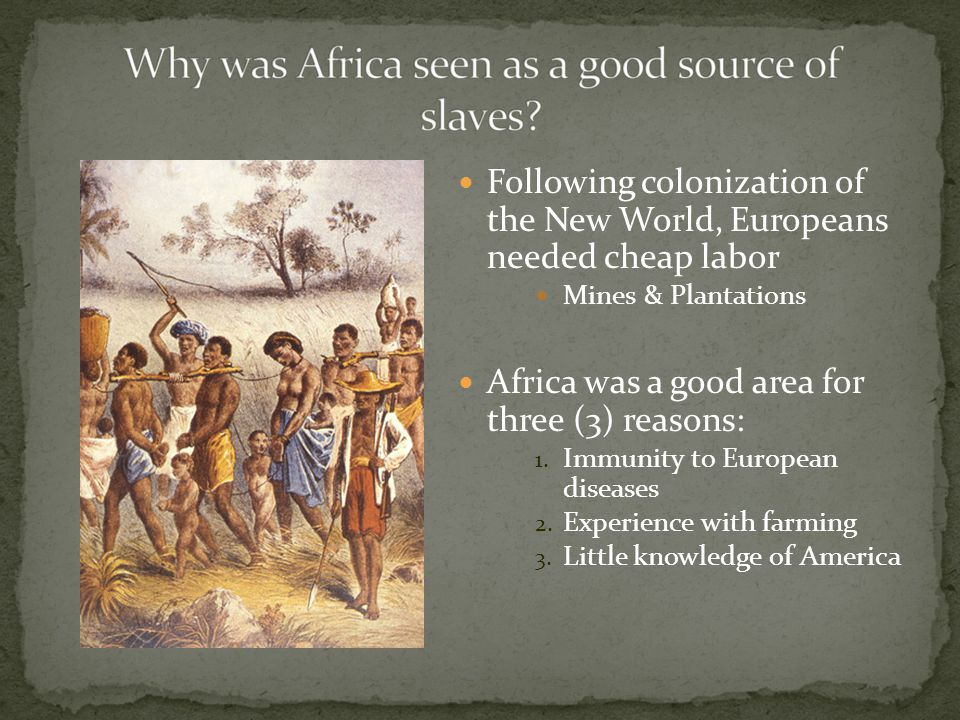 Following colonization of the New World, Europeans needed cheap labor Mines & Plantations Africa was a good area for three (3) reasons: 1.