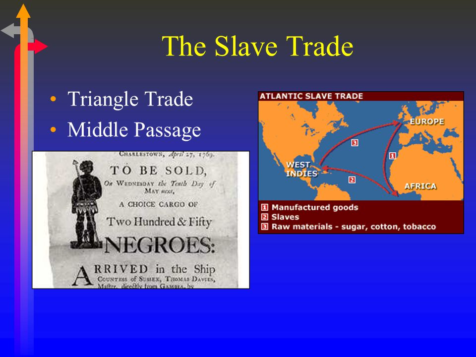 The Slave Trade Triangle Trade Middle Passage