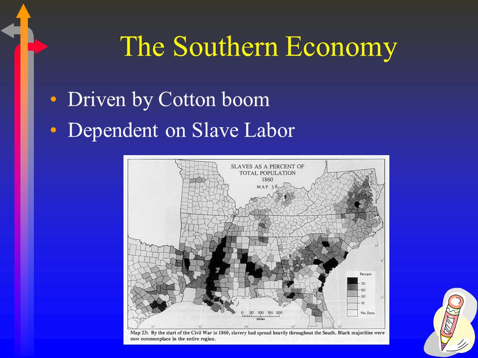The Southern Economy Driven by Cotton boom Dependent on Slave Labor