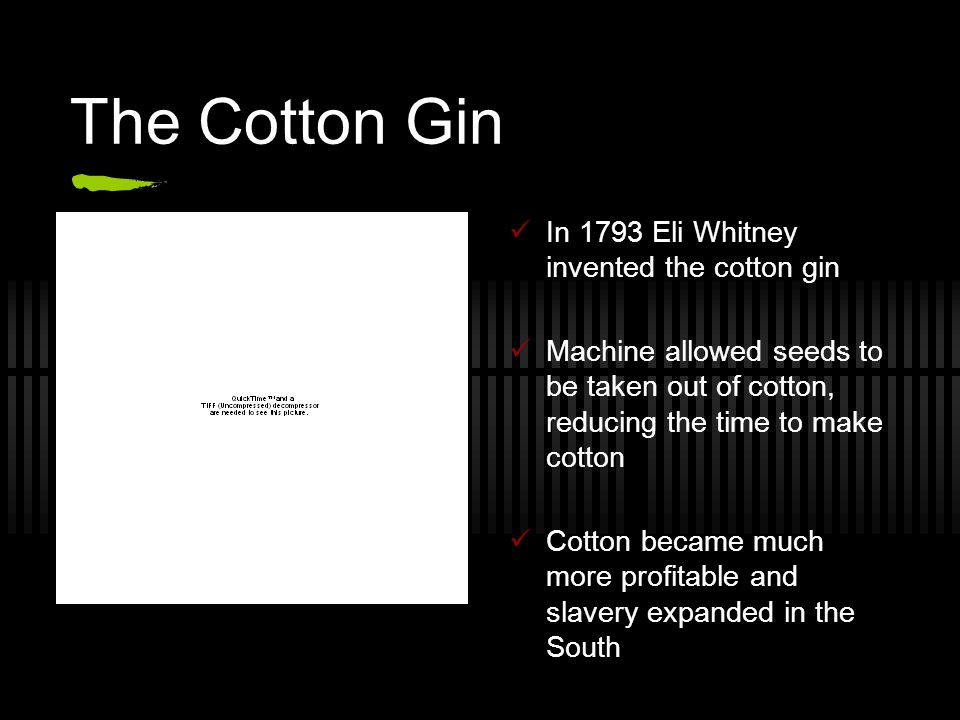 The Cotton Gin In 1793 Eli Whitney invented the cotton gin Machine allowed seeds to be taken out of cotton, reducing the time to make cotton Cotton became much more profitable and slavery expanded in the South