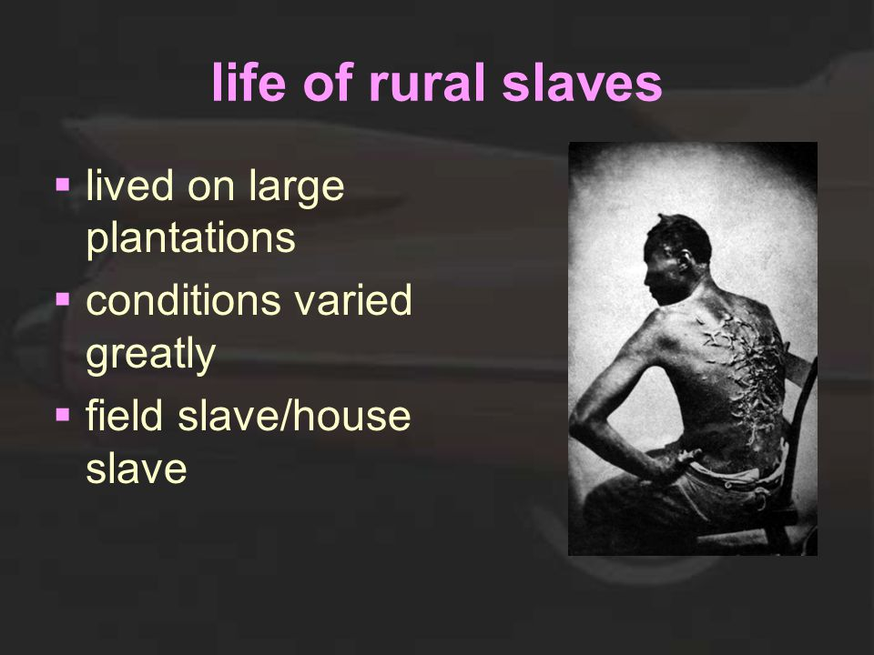life of rural slaves  lived on large plantations  conditions varied greatly  field slave/house slave