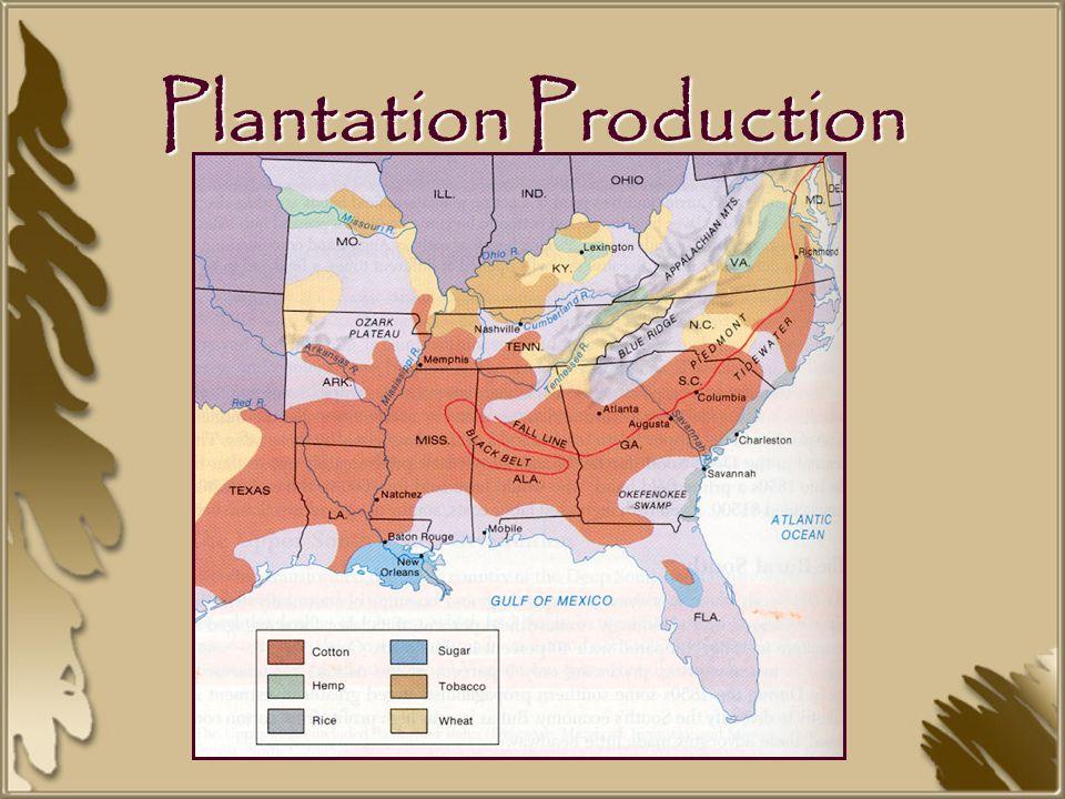 A Georgia Plantation