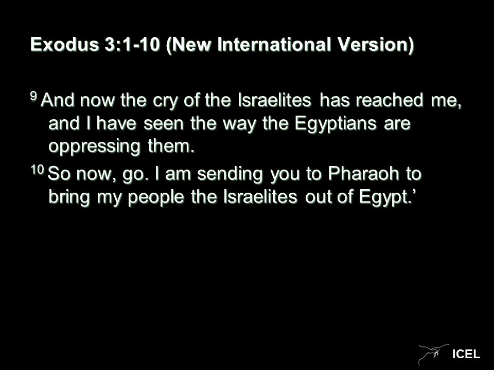 ICEL Exodus 3:1-10 (New International Version) 9 And now the cry of the Israelites has reached me, and I have seen the way the Egyptians are oppressing them.