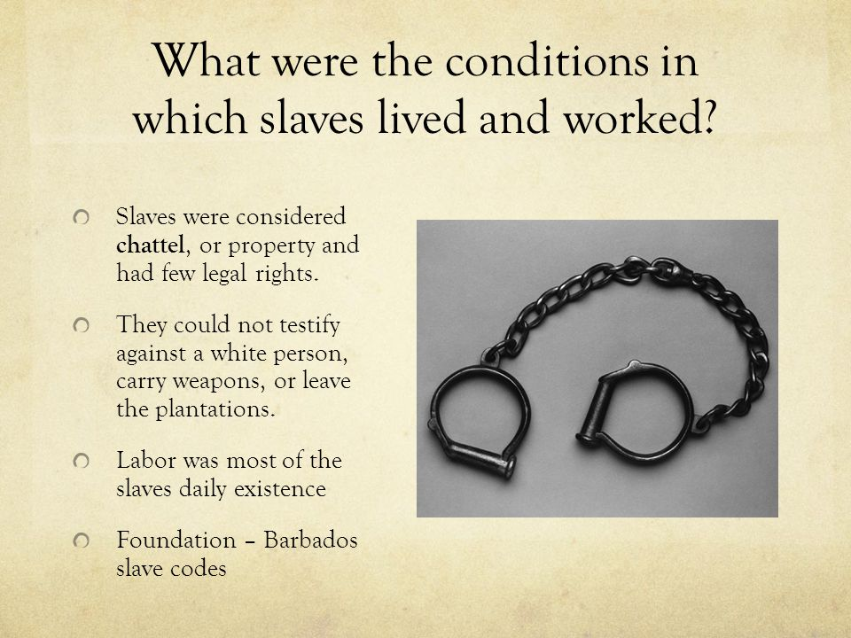What were the conditions in which slaves lived and worked? Slaves were considered chattel, or property and had few legal rights. They could not testif