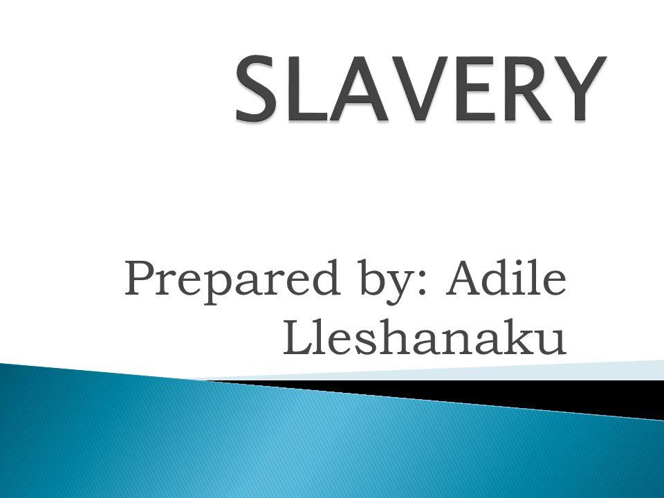 Prepared by: Adile Lleshanaku