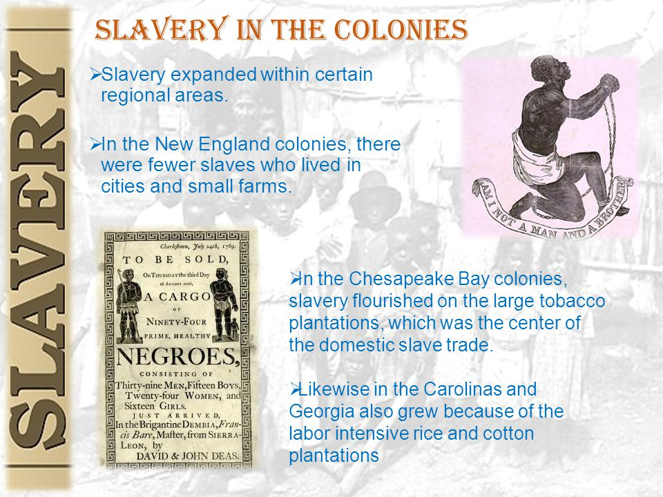 Slavery in the Colonies  Slavery expanded within certain regional areas.  In the New England colonies, there were fewer slaves who lived in cities a