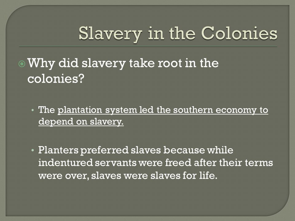  Why did slavery take root in the colonies.