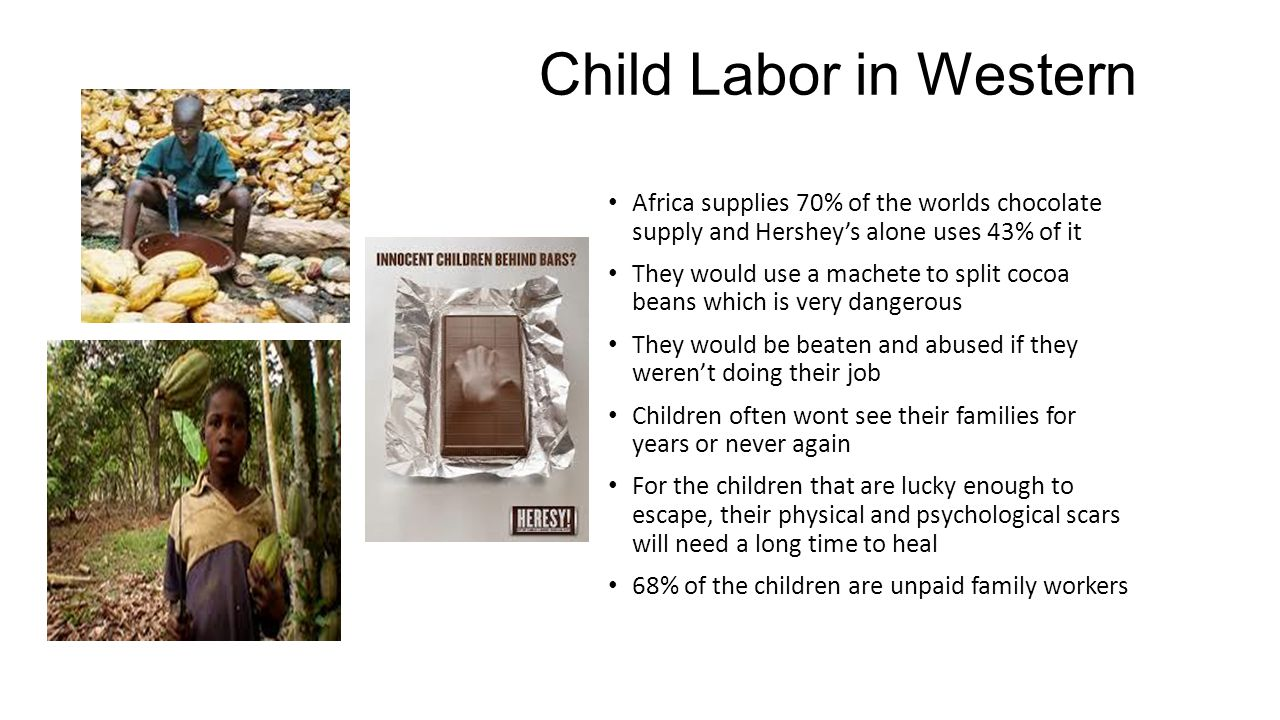 Child Labor in Western Africa Africa supplies 70% of the worlds chocolate supply and Hershey's alone uses 43% of it They would use a machete to split cocoa beans which is very dangerous They would be beaten and abused if they weren't doing their job Children often wont see their families for years or never again For the children that are lucky enough to escape, their physical and psychological scars will need a long time to heal 68% of the children are unpaid family workers
