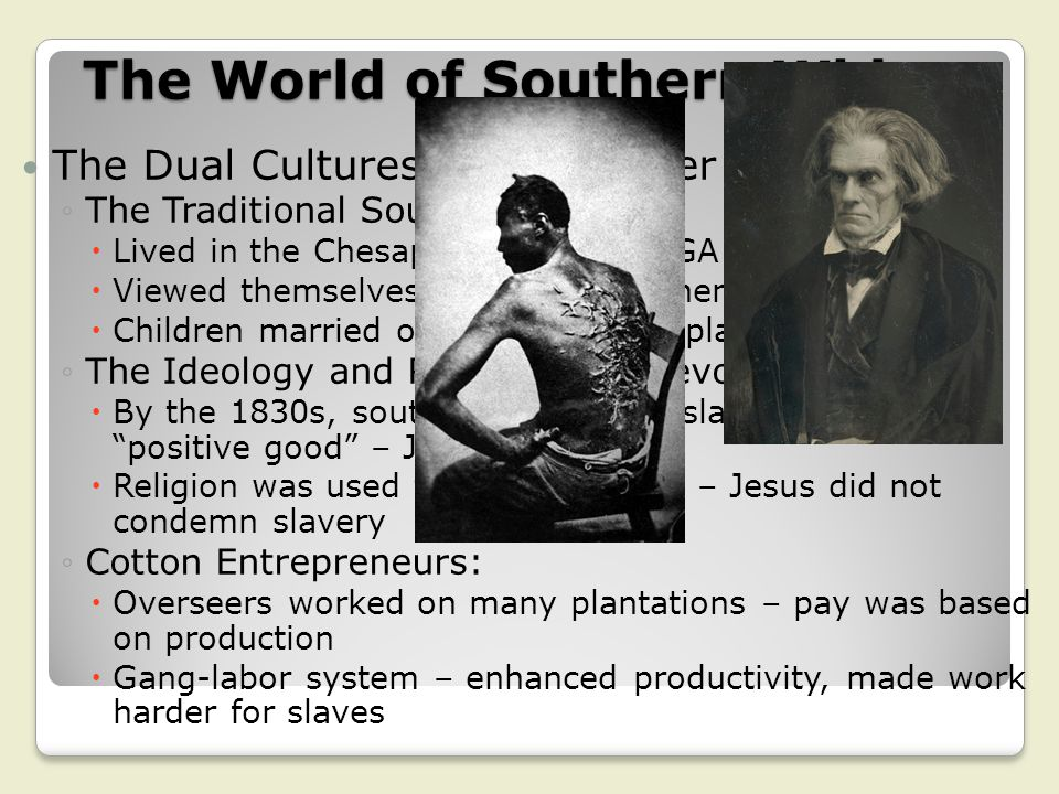 The World of Southern Whites The Dual Cultures of the Planter Elite: ◦The Traditional Southern Gentry:  Lived in the Chesapeake, SC, and GA  Viewed