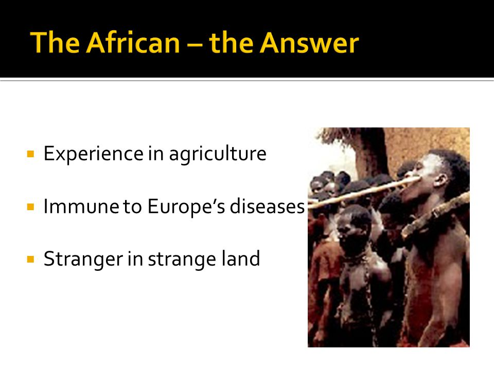  Experience in agriculture  Immune to Europe's diseases  Stranger in strange land