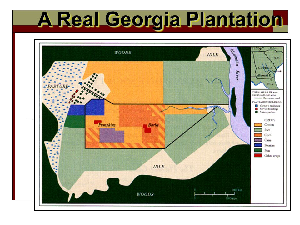 A Real Georgia Plantation