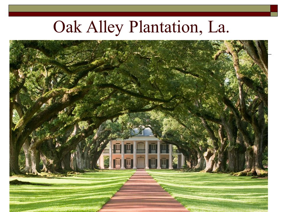 Oak Alley Plantation, La.