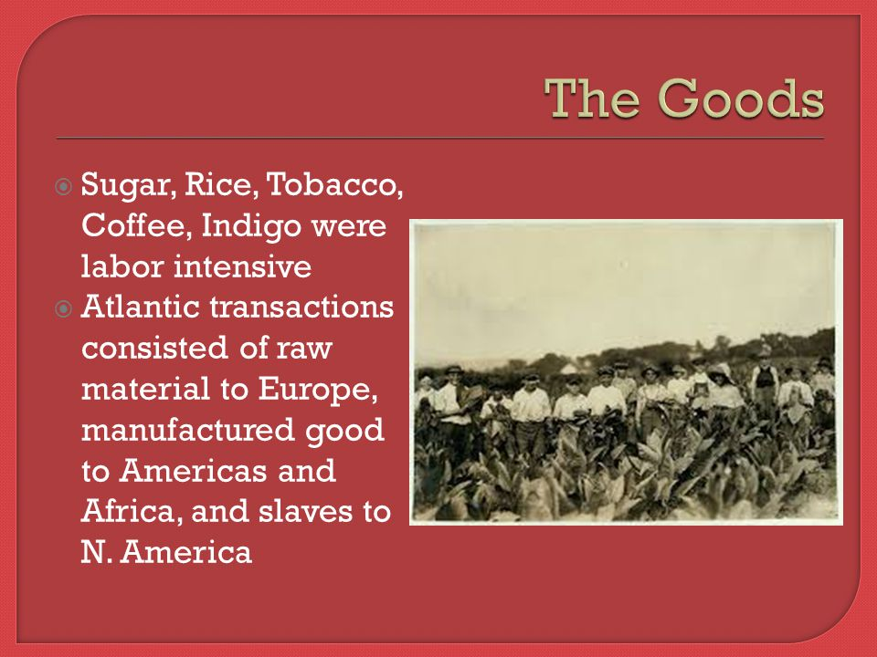  Sugar, Rice, Tobacco, Coffee, Indigo were labor intensive  Atlantic transactions consisted of raw material to Europe, manufactured good to Americas and Africa, and slaves to N.