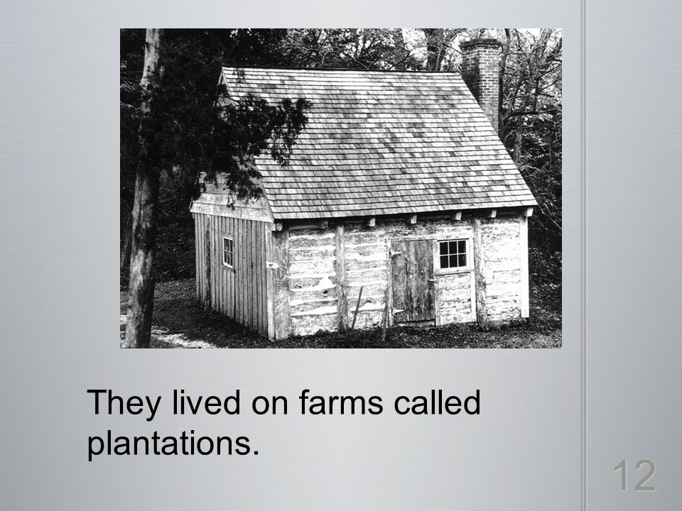 They lived on farms called plantations. 12
