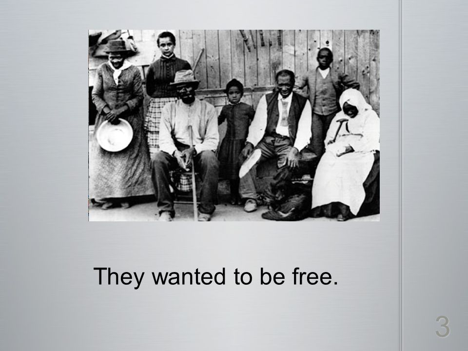 They wanted to be free. 3