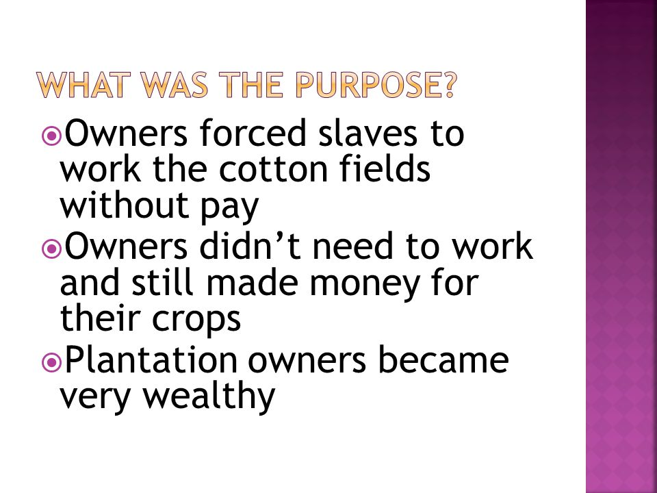  Owners forced slaves to work the cotton fields without pay  Owners didn't need to work and still made money for their crops  Plantation owners became very wealthy