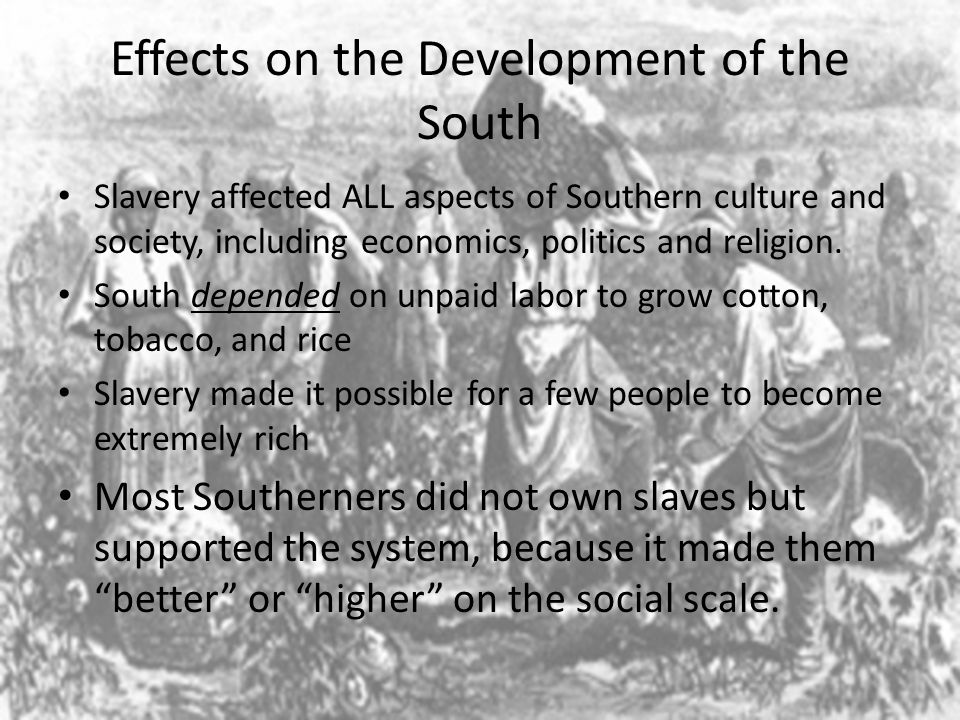 Effects on the Development of the South Slavery affected ALL aspects of Southern culture and society, including economics, politics and religion. Sout