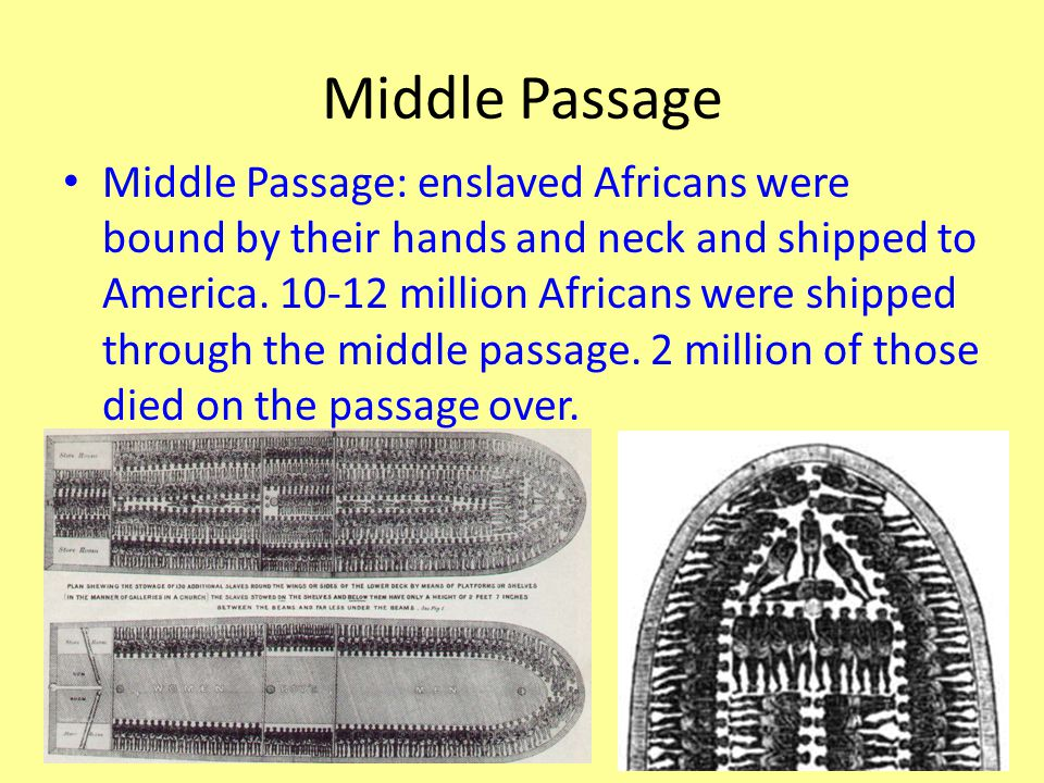 Middle Passage Middle Passage: enslaved Africans were bound by their hands and neck and shipped to America.
