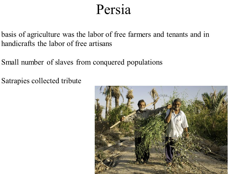 Persia basis of agriculture was the labor of free farmers and tenants and in handicrafts the labor of free artisans Small number of slaves from conquered populations Satrapies collected tribute