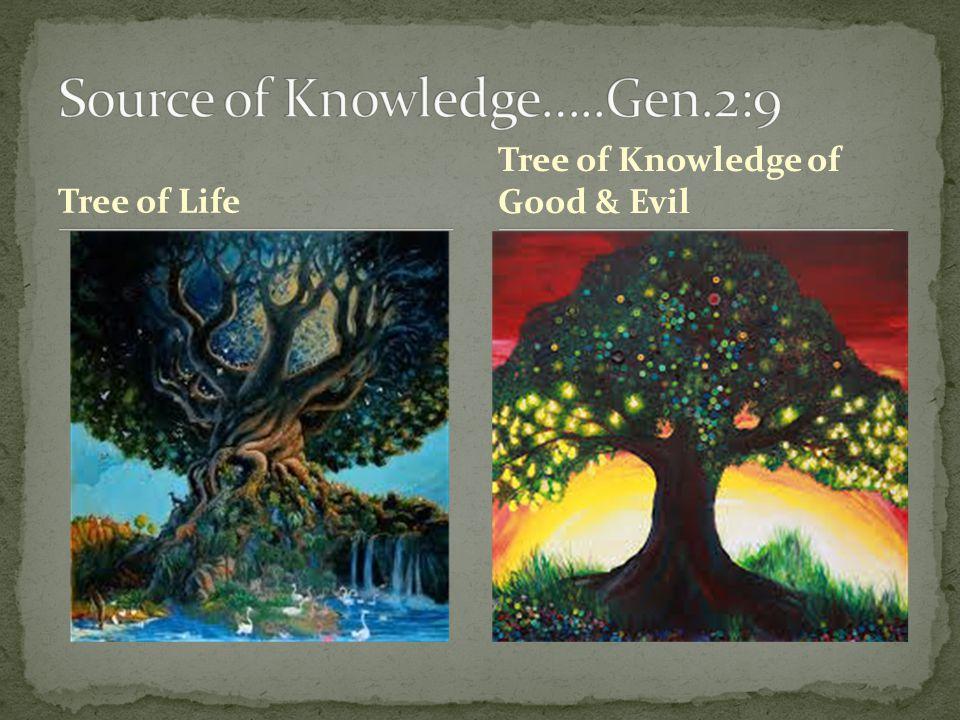 Tree of Life Tree of Knowledge of Good & Evil