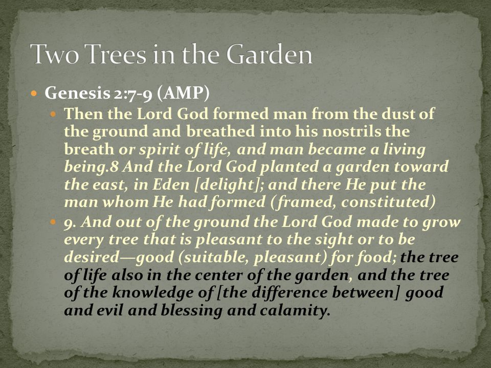 Genesis 2:7-9 (AMP) Then the Lord God formed man from the dust of the ground and breathed into his nostrils the breath or spirit of life, and man beca